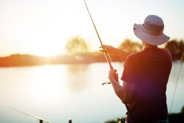 Top Fishing Spots near Mormon Lake